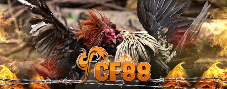 cf88-725